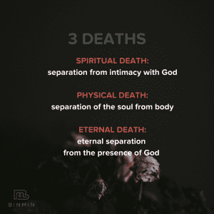 Dying flower with text: Three Deaths: Spiritual Death, Physical Death, Eternal Death